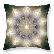 Ancient Light X Throw Pillow