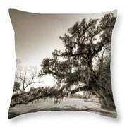Ancient Live Oak Tree Throw Pillow