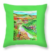 Ancient One Views River Throw Pillow
