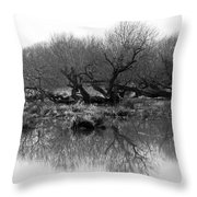 Ancient Pollard Trees Throw Pillow