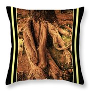 Ancient Roots Of Greece Throw Pillow