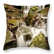 Ancient Stream Throw Pillow