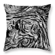 Ancient Stump Throw Pillow
