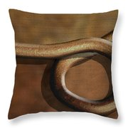 And Back Again Throw Pillow