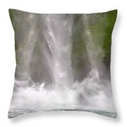 And Down Comes The Water Throw Pillow