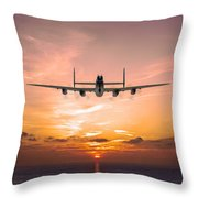 And In The Morning Throw Pillow