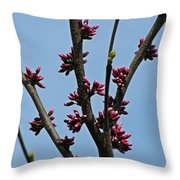 And It Came As Though A Child Burst Into The Room Throw Pillow