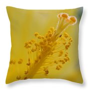 And So It Begins Throw Pillow