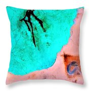 And The Spirit Moved Throw Pillow