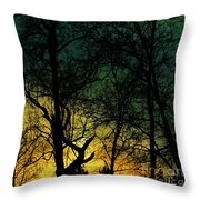 And Then I Did Throw Pillow