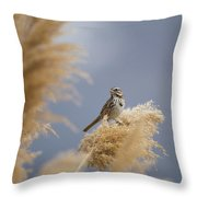 And You Are? Throw Pillow