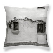 Andalucia Wall Throw Pillow