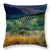 Andalucian Landscape  Throw Pillow