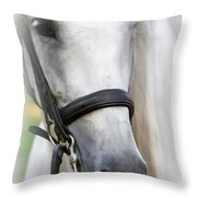 Andalusian Portrait Throw Pillow