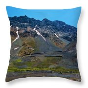 Andean Journey Throw Pillow
