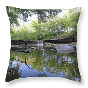 Anderson Falls, Indiana Throw Pillow