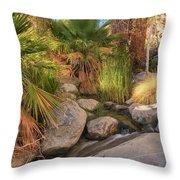 Andreas Canyon Babble Throw Pillow