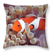 Anemone And Clown-fish Throw Pillow