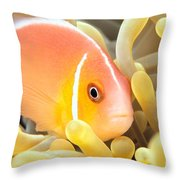 Anemone, Close-up Throw Pillow