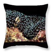 Anemone Crab Throw Pillow
