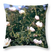 Anemone Throw Pillow