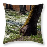 Anemone Forest Throw Pillow