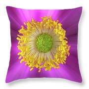 Anemone Hupehensis 'hadspen Throw Pillow