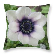 Anemone One Throw Pillow
