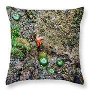 Anemone Reflection  Throw Pillow