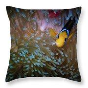Anemonefish Throw Pillow
