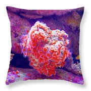 Anemones In Monterey Aquarium-california   Throw Pillow