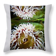 Anenome Reflection Throw Pillow