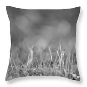 aNew Throw Pillow