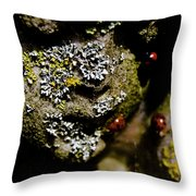 Angel Bugs Throw Pillow