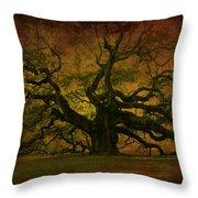 Angel Oak 3 Charleston Throw Pillow