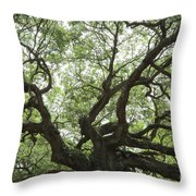 Angel Oak Branches Throw Pillow