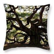 Angel Oak In November Throw Pillow