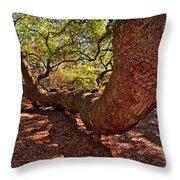 Angel Oak Tree 003 Throw Pillow