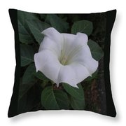 Angel Trumpet - Color Throw Pillow