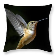 Angelic Hummer Throw Pillow