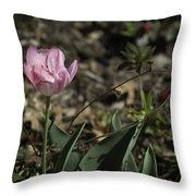 Angelique Peony Tulip Throw Pillow