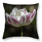 Angelique Peony Tulips 2 Throw Pillow