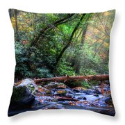 Angels At The River Throw Pillow
