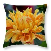 Angel's Obsession Throw Pillow