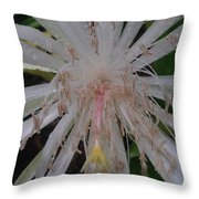 Angels Tears Throw Pillow