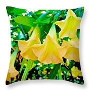 Angel's Trumpets At Pilgrim Place In Claremont-california Throw Pillow