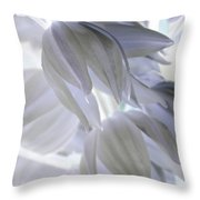 Angels Wings Throw Pillow