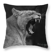 Angola Lioness Throw Pillow