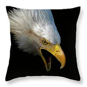 Angry Bald Eagle Portrait Throw Pillow
