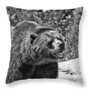 Angry Bear Black And White Throw Pillow